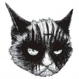 Gumpy cat