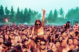 Top 5 – Fem fine festivaler