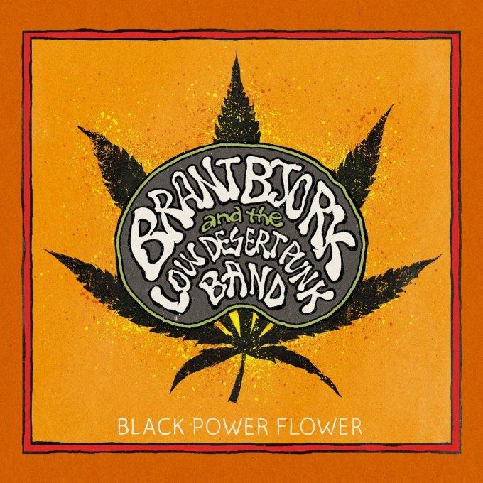 Flower power-stoner